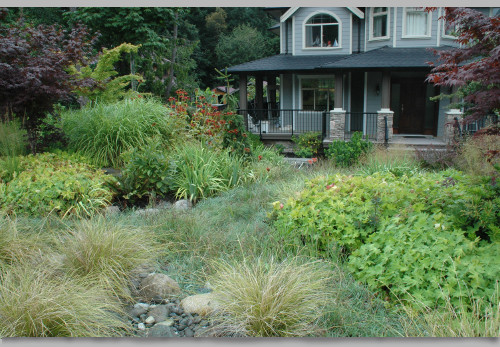 Image of landscaped front yard